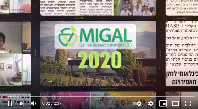 Migal's Year in Review 2020